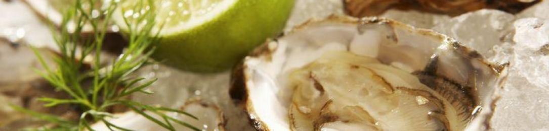 Plus de 22 000 $ amassés lors de la première soirée d'huîtres au profit de la Fondation Aubainerie
